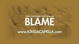 Calvin Harris feat. John Newman - Blame (Studio Acapella)