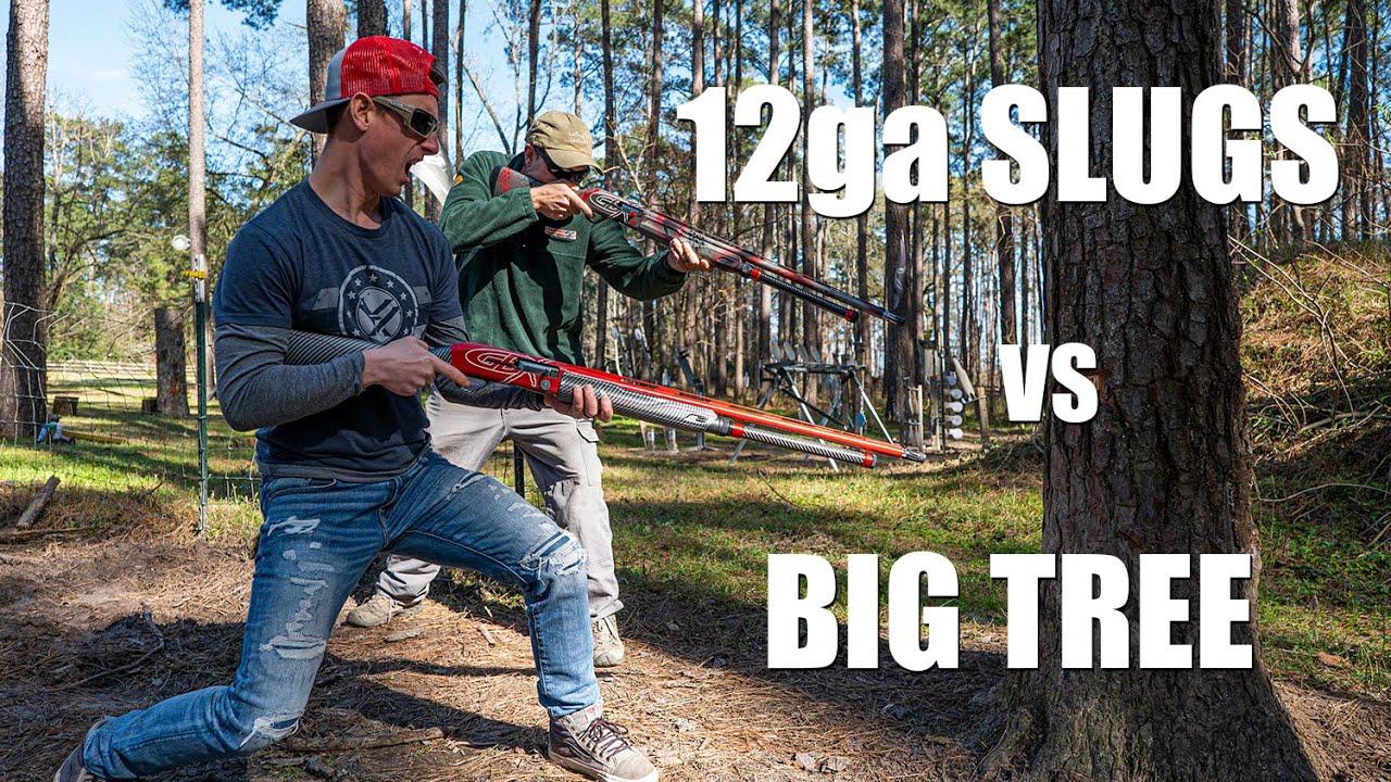 Shotgun Slugs vs BIG Tree 🌲with Dustin Ellermann | Gould Brothers