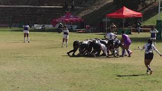 Girls Rugby  Lions vs Griffons 2nd half Highlights 2019