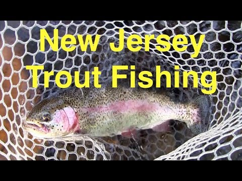 New Jersey Trout Fishing