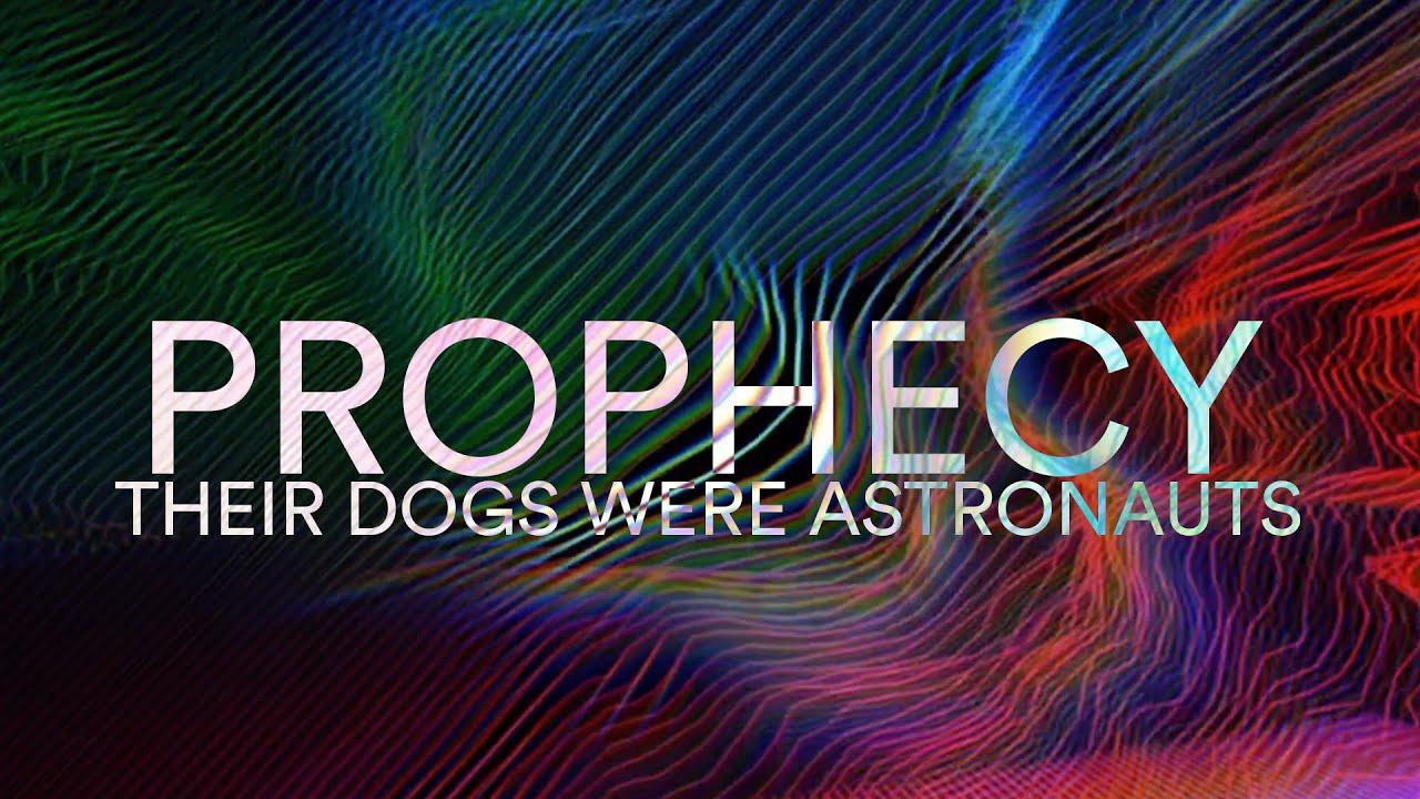 their dogs were astronauts neon theatre