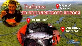 Рыбалка на Камчатке на реке Большая Трофейная чавыча 2021 сходы обрывы клёвые места Часть 1