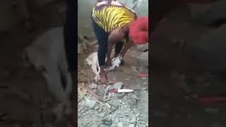 Woman Slaughters Goat Under Feet
