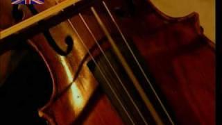 Making Violin Strings