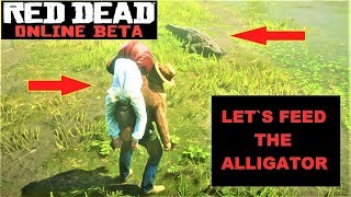 let´s feed the ALLIGATOR ... Red Dead Online , how to feed the alligator