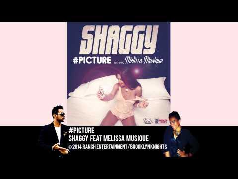 Picture - Shaggy feat Melissa Musique (Official Audio)