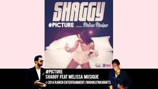 #Picture - Shaggy feat Melissa Musique (Official Audio)