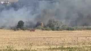 Incendio lungo la statale Bifernina
