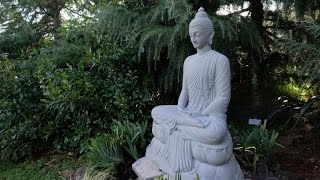 Vimutti Buddhist Monastery - Life of Peace(Vimutti Buddhist Monastery is situated in the midst of 150 acres of tranquil forest, streams, ponds and rolling hills 30km south of Auckland, New Zealand., 2015-12-27T06:12:02.000Z)