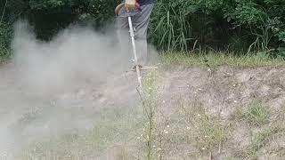 강원벌초대행