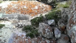 Усть-Анга (Байкал)(Видео из отчета: Путешествие по Байкалу на лодке 2014 или
