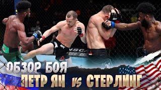ОБЗОР БОЯ: Петр Ян - Алджэмейн Стерлинг | UFC 259
