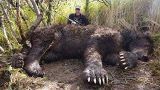 10 世上最大的动物合集