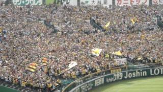 甲子園での凄まじい応援。5万人の阪神ファン