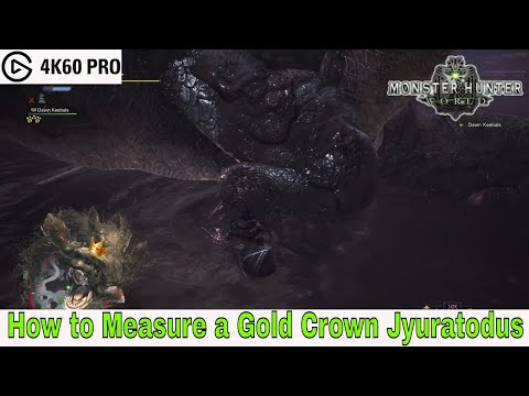 Monster Hunter: World - How to Measure a Gold Crown Jyuratodus