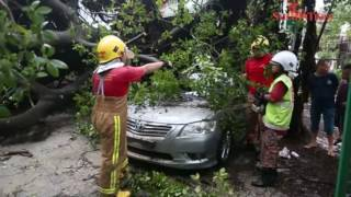 Ipoh rainstorm leaves trail of destruction