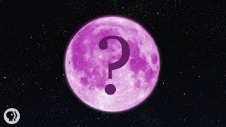 What Color Is The Moon?