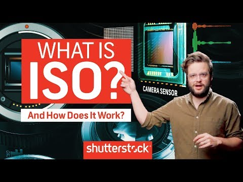 How To Expose An Image: What Is ISO? | Shutterstock Tutorials
