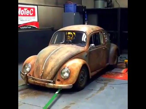 Dung Beetle on the Dyno