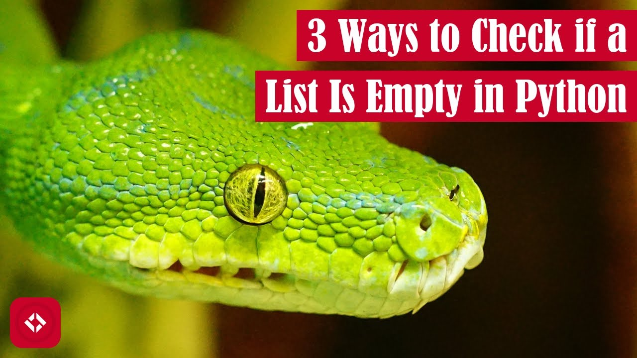 How to Check if a List is Empty in Python: Type Flexibility