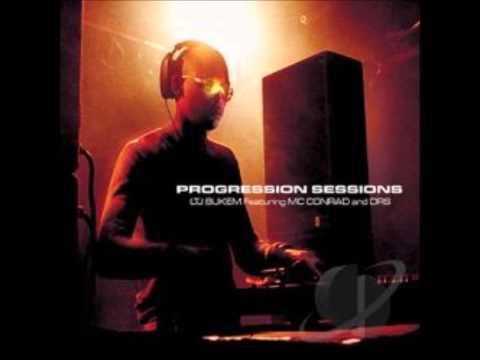 LTJ BUKEM Progression Sessions 5 Indain Summer mp3