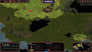 AoE Definitive Edition: Multiplayer (Choson civ)