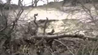 Felsbruch in Burglahr
