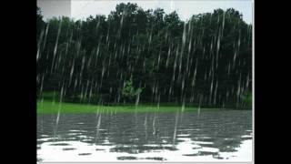PORKYMAN - BRING DE WATER