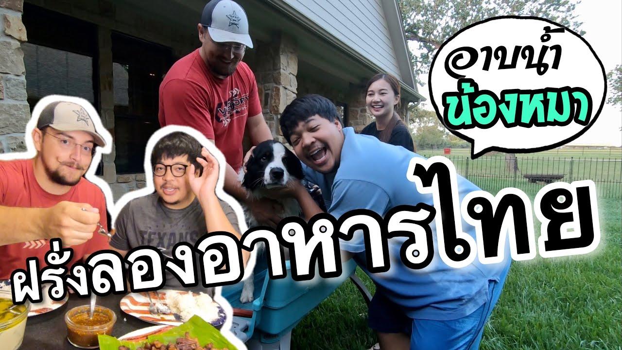 เพื่อนฝรั่งลองชิมอาหารไทย / อาบน้ำน้องหมา | Z4Life Channelnel