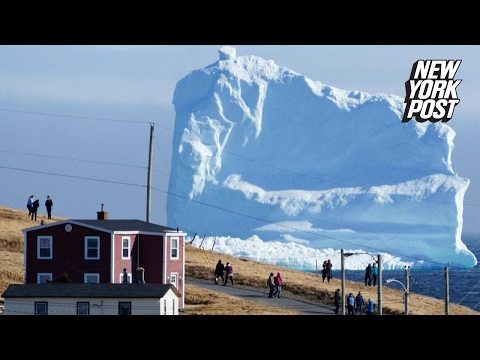 Massive iceberg stops Canada tourists in their tracks
