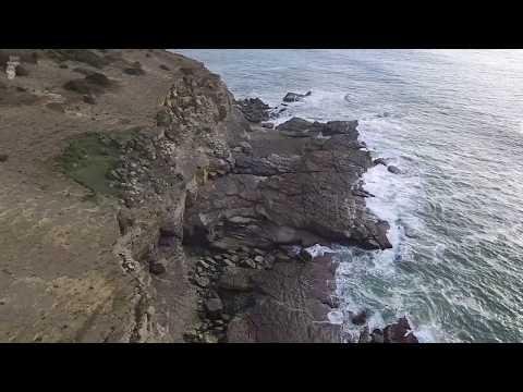 Pegadas de dinossauros em Portugal - Jazida Norte (Salir do Porto)