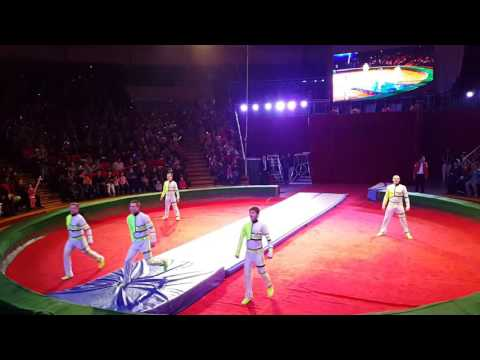 Circus Acrobatics Tumbling team