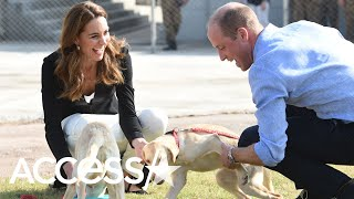Kate Middleton And Prince William End Their Pakistan Tour Playing With Puppies