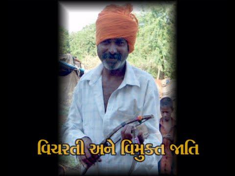 Social Justice Vicharti ane Vimukta Jati