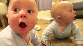 BABY FIGHTS REFLECTION!