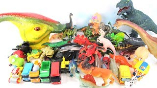 Parasaurolophus Big Head Magic. Learn Dinosaurs with Animals M&M Mini Tayo Learning dinosaur Toys 공룡