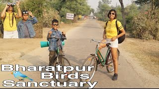 Bharatpur Birds sanctuary   Keoladeo National Park   best weekend getaway   natural beauty
