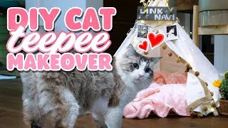Giving My Cat A House Makeover - DIY