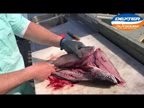 How To Fillet A Weakfish / Seatrout