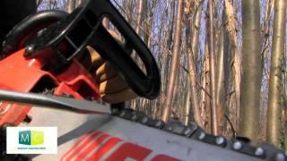 Tronçonneuse, entretien, tension chaîne, chainsaw, maintenance, chain tension
