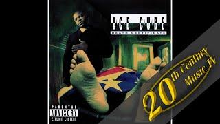 Ice Cube - Robin Lench