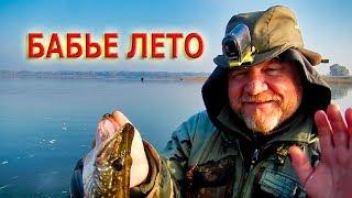 Троллинг ЩУКИ в БАБЬЕ ЛЕТО конец октября