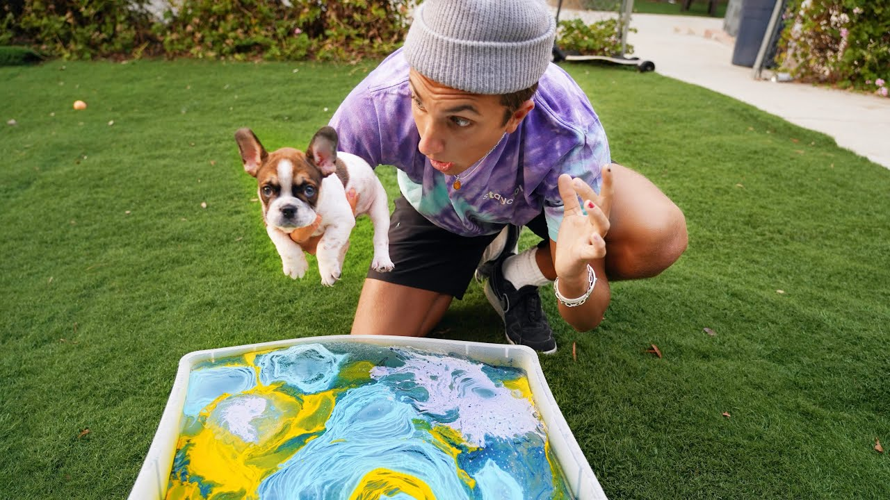 HYDRO DIPPING My PUPPY!! 🐶( Satisfying )