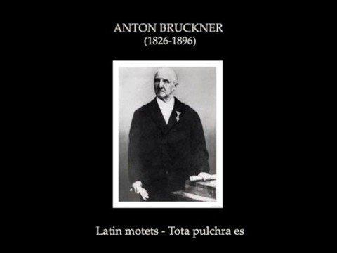 Anton Bruckner -  Tota pulchra es