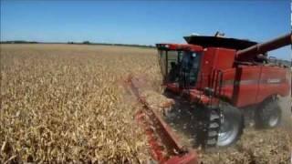 Parker Farms Corn Harvest 2011