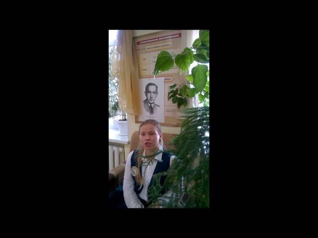 Изображение предпросмотра прочтения – МарияЗайкова читает произведение «Октябрьский рассвет» И.А.Бунина