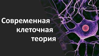 2.1 Современная клеточная теория