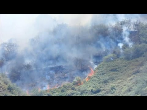 France 24:Gran Canaria wildfire rages out of control as 9,000 are evacuated
