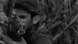 Documentário Gobar Filmes 2 - Guerrilha e Terror Comunista durante o Regime Militar
