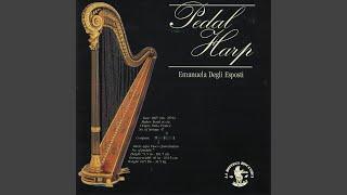 Sonata I Comme Scene Pathetique, Op. 16: Allegro moderato espressivo, allegro molto andante...